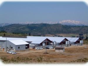 直営農場 山田ガーデンファームについてご紹介します!