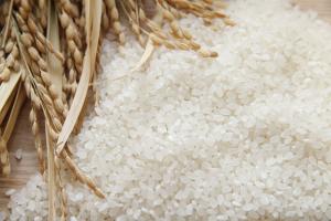 これからの季節はお米の保管にご注意を!!