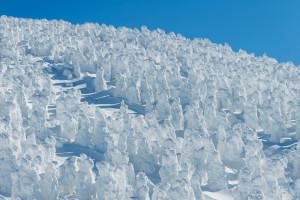 冬は山形で樹氷を楽しみませんか?