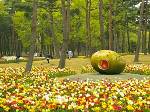 家族で楽しい!写真映え抜群の卵型遊具のある公園をご紹介します!