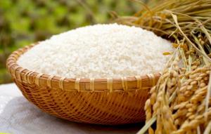 8月18日はお米の日!新米の時期を控え、今一度炊飯器の仕組みや種類を見直してみませんか?