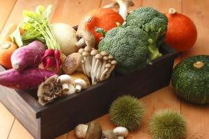 今が旬!秋野菜×たまごレシピをご紹介致します♪