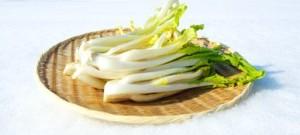 米沢の冬野菜「雪菜」。ふすべ漬けだけじゃない「雪菜レシピ」をご紹介します