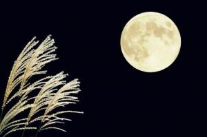 """月のきれいな夜に""""月見そば""""はいかがですか?月見そばのアレンジレシピをご紹介します。"""