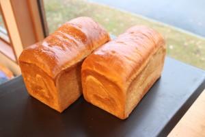 紅花たまごの美味しさがたっぷり!たまごやの食パン!